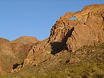 Organ pipe cactus arches.jpg