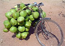 A bicycle loaded with so many green fruits that the rear wheel can not be seen.