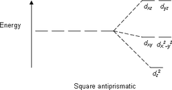 Square antiprismatic.png