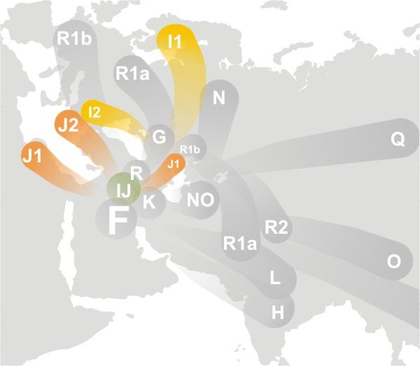 📌 Haplogroup IJ (Y-DNA)